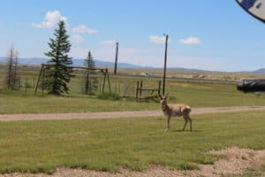 July23 Casper to Medicine Bow, WY – 83 Miles